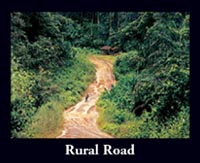 Liberian Sapo Forest